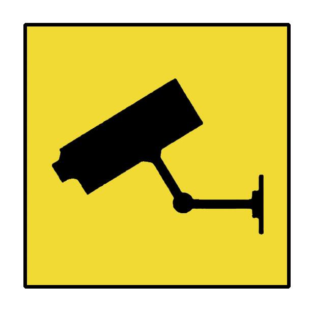 Area videosorvegliata